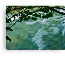 Forstau Bach . Ratstaad. Austria, My Europe. made in Brown Sugar.6 favoritings 214 views . viele Grüße! Canvas Print