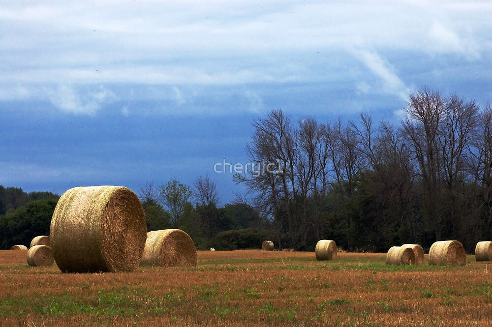 Earth and Sky by cherylc1