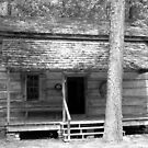 Homestead in the Georgia woods by Kent Burton