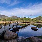 Tidal River Bridge by Joel Bramley