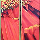 Red Gerbera I and II by Jean LeBaron