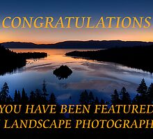 Banner Entry for Landscape Group by Justin Baer