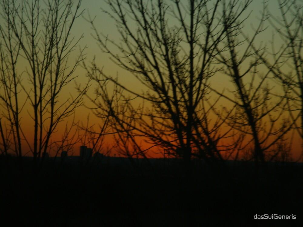 Bare Limbs Against a Closing Sky...@ 60 MPH by dasSuiGeneris