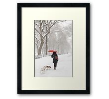 Winter Walk Framed Print