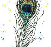 peacock feather by nostiya