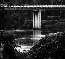 Catawba Bridge by Tammi Rollins