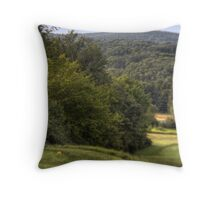 Swaths of Green Throw Pillow