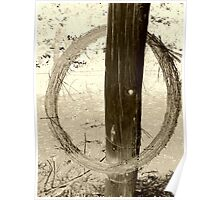 barbed wire enso Poster
