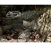 Damaged Crabpot, Beaufort, NC Photographic Print