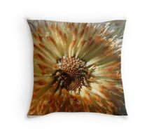 Woolly banksia Throw Pillow