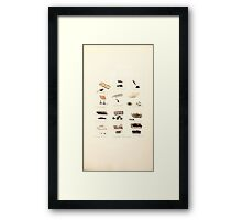 Coloured figures of English fungi or mushrooms James Sowerby 1809 0969 Framed Print