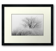 At the Brink of Winter Framed Print
