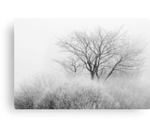 At the Brink of Winter Canvas Print