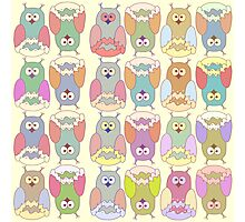 Baby illustration with owls Photographic Print