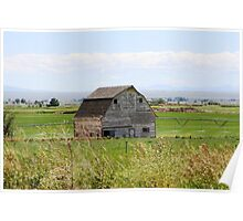 Weathered barn in a field Poster
