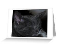 Cat Napping Greeting Card