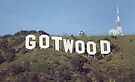 GOTWOOD by John Medbury (LAZY J Studios)