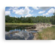 Beaver Lodge Lake Metal Print
