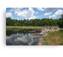 Beaver Lodge Lake Canvas Print