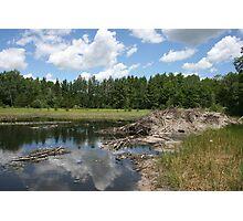 Beaver Lodge Lake Photographic Print