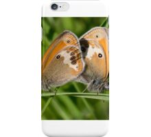 Mating Pearly Heath Butterflies iPhone Case/Skin