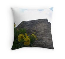 Mission San Jose Wall and Flowers Throw Pillow