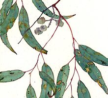 gum leaves - larger by Gabby Malpas