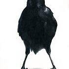 The Crow by Will Pleydon