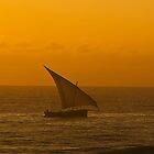 Bay Scene Dar es Salaam Tanzania by Warren. A. Williams