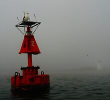 Number 2 buoy,Palmer's light by photojam