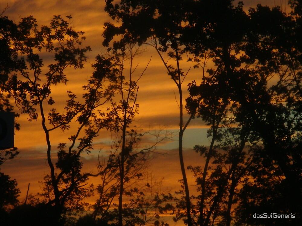 Sky Ablaze by dasSuiGeneris