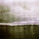 under a purple sky by mario farinato