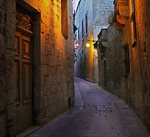 OLD CITY MDINA MALTA by Ronald cox