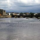 Ayr Harbour 02 by biddumy