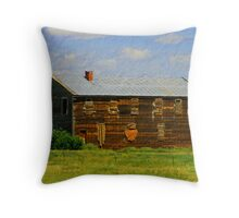boarded up Throw Pillow