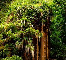 Quinta da Regaleira garden by terezadelpilar~ art & architecture