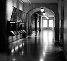 New York Public Library II by NikonNoob