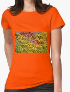 Colorful echinacea flowers Womens Fitted T-Shirt