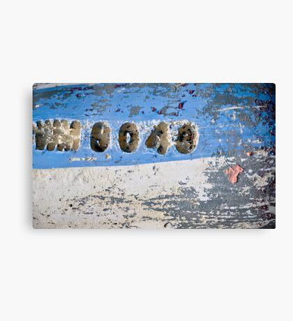 0043 Canvas Print