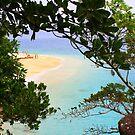 Rainforest through to the Beach by bambiisme