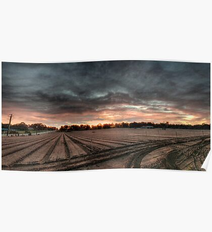 Sunset over the market garden Poster
