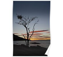 Sunset in Tasmania Poster