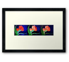 Evolution of a Painted Beauty Framed Print