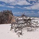 Shifting, whispering sands by Nancy Richard
