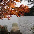 dock by Leeanne Middleton