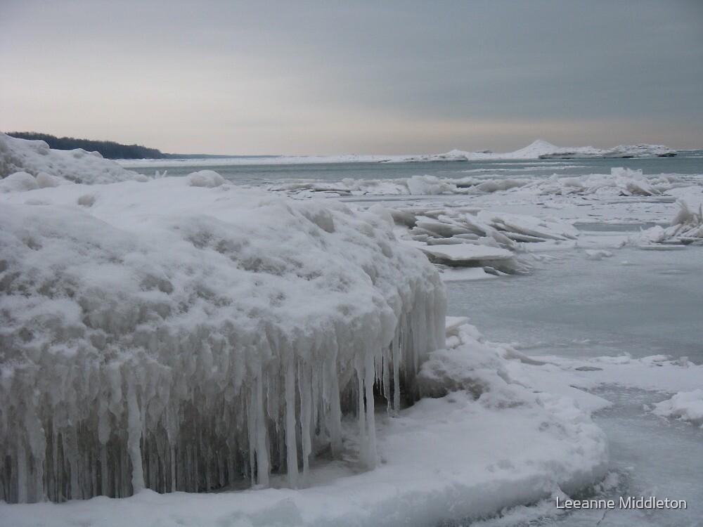 winter ice by Leeanne Middleton