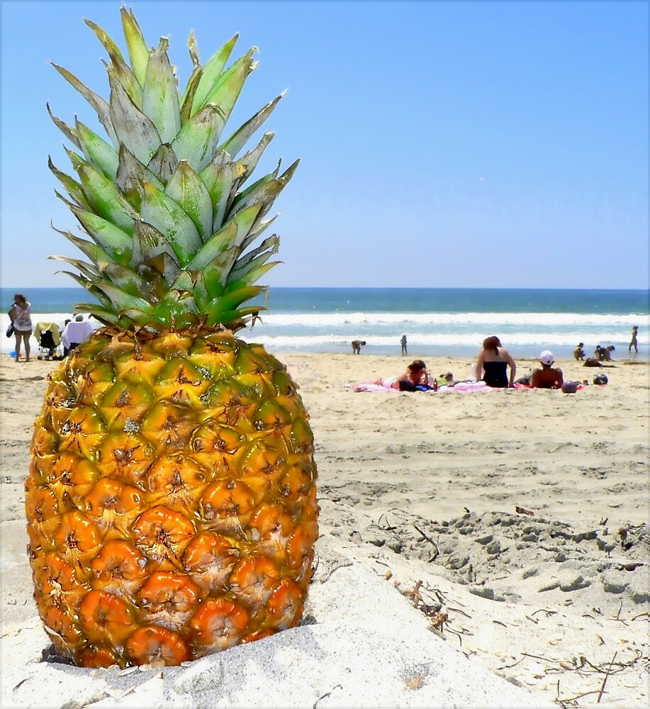 Homesick Pineapple On The Beach by paintingsheep