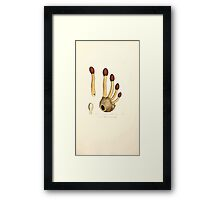 Coloured figures of English fungi or mushrooms James Sowerby 1809 0931 Framed Print