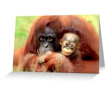 Bornean orangutan  Greeting Card