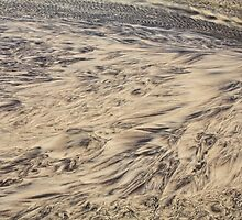 Patterns in the Sand #2 by Elaine Teague